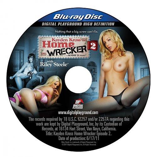 Home wrecker 2
