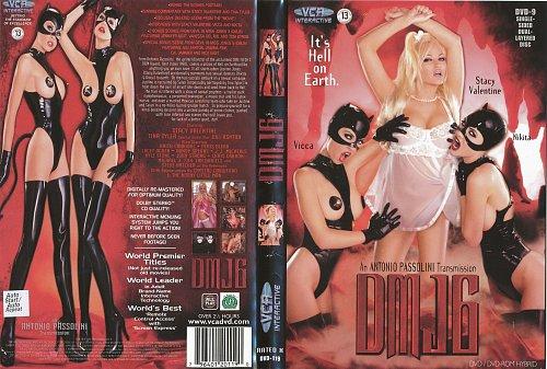 Devil in Miss Jones 6